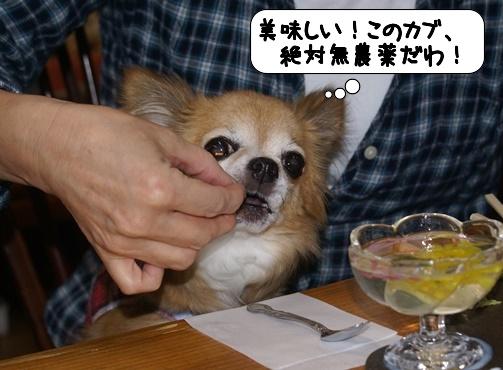 20141025_050210.jpg