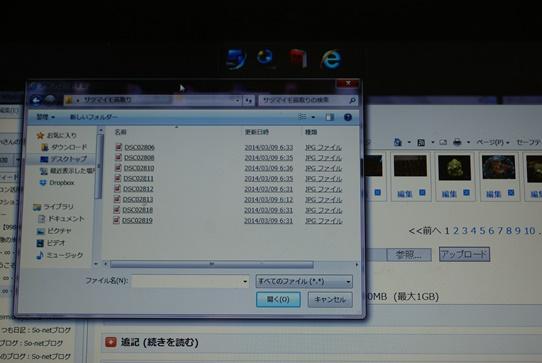 DSC02820.JPG